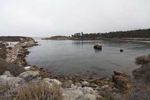 A trip to Monastery Beach and Pt. Lobos Whaler's Cove and Bluefi